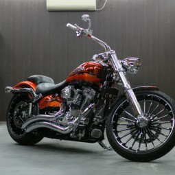 H-D SOFTAIL BREAKOUT CVO